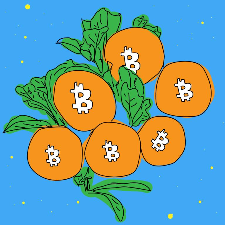 Bitcoin Speicherpools Mempools Transaktionsppols Liste Nodes